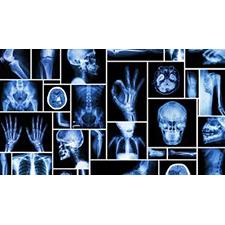Radiologic Technology Program